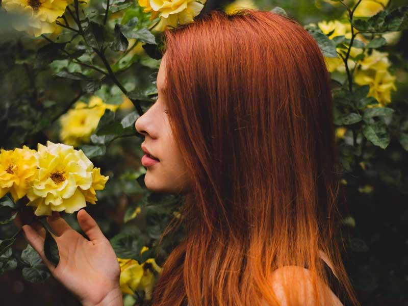biljne boje za kosu