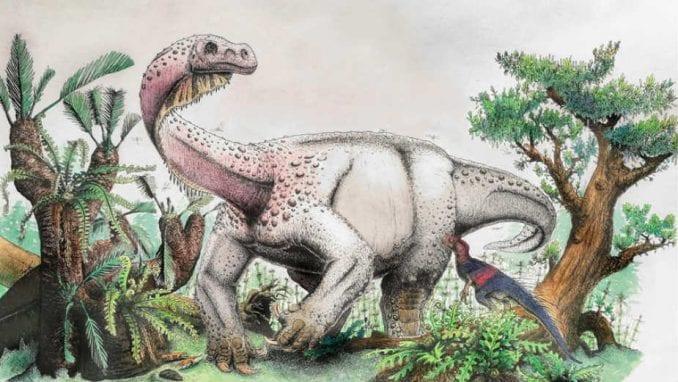 Zagonetne rupe na lobanji tiranosaurusa 1