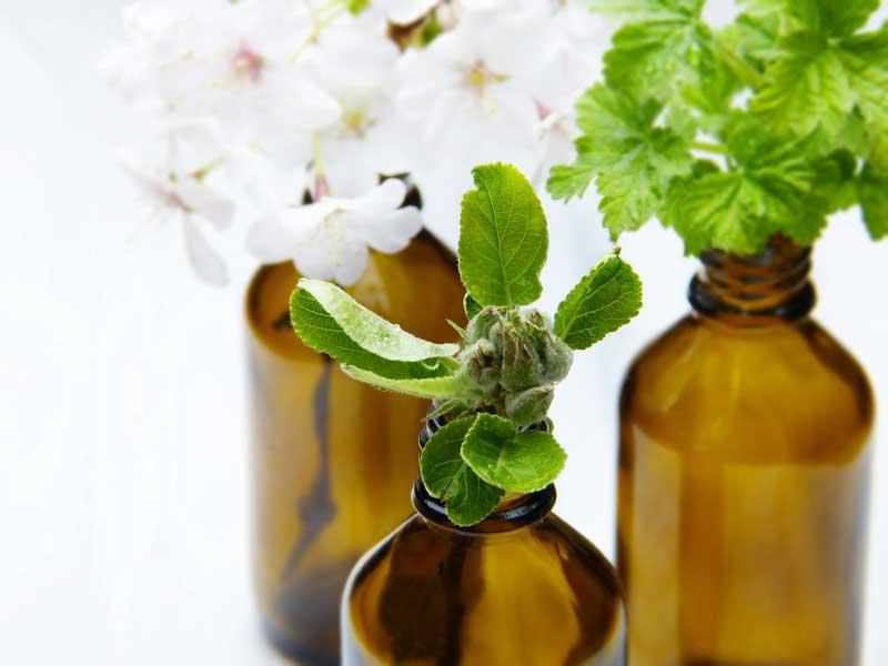 bioaktivni sastojci u kozmetici