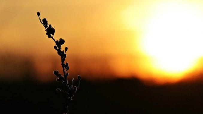 Koliko uspešno naučnici predviđaju klimatske promene? 1