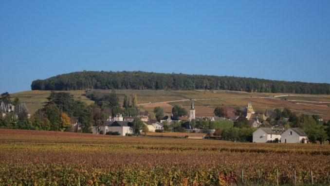 Francuska: Put velikih vinograda 1