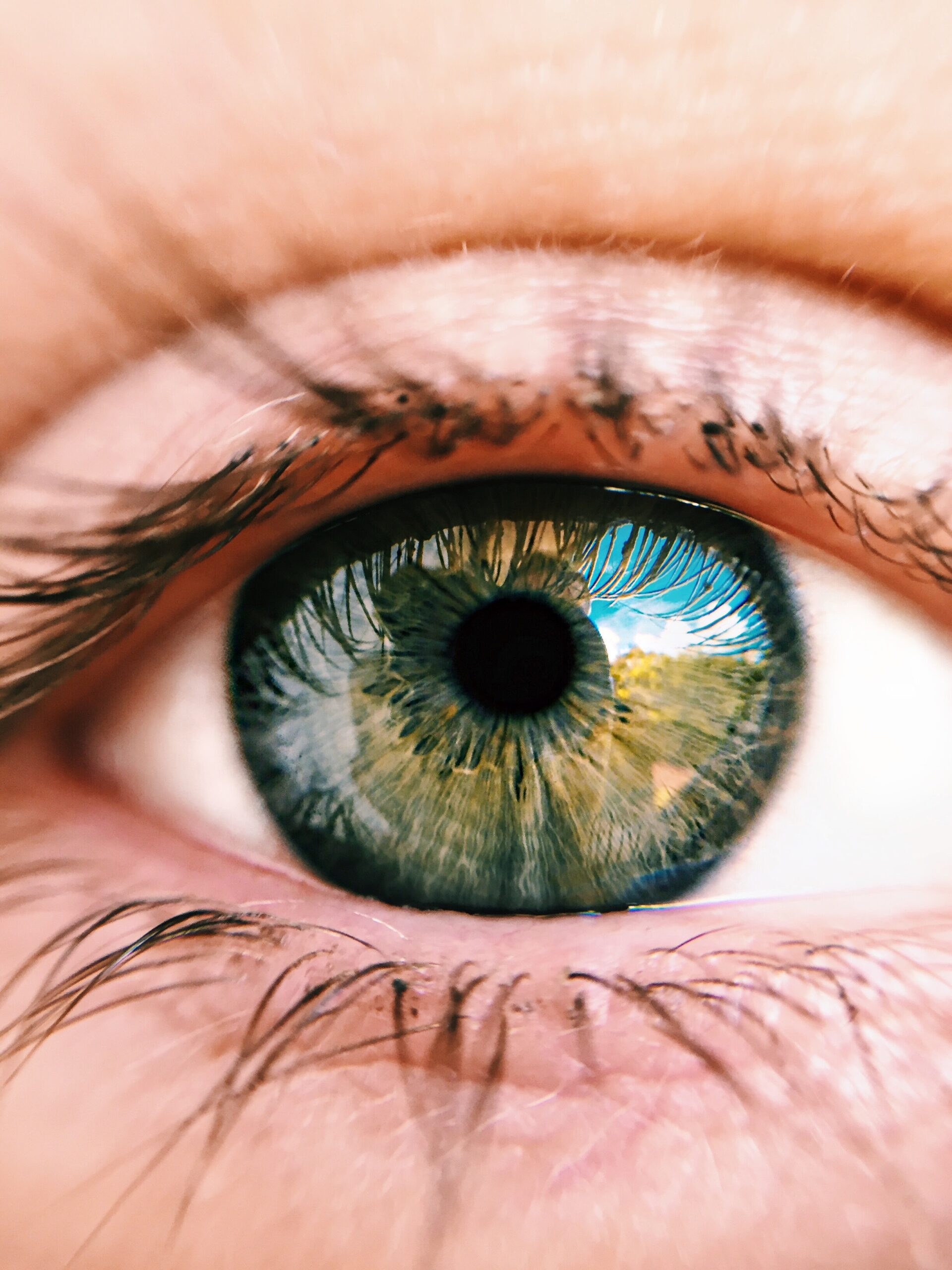 zablude o vidu