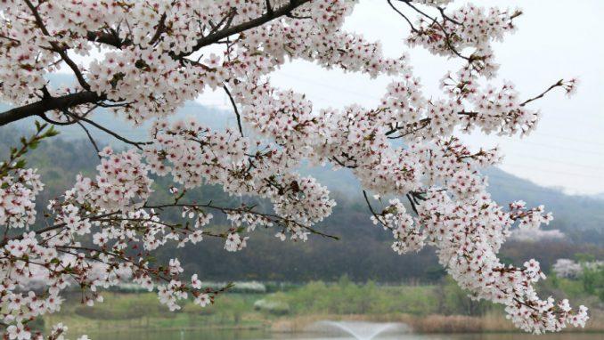 Prvi dan proleća, pomeranje sata 29. marta 1