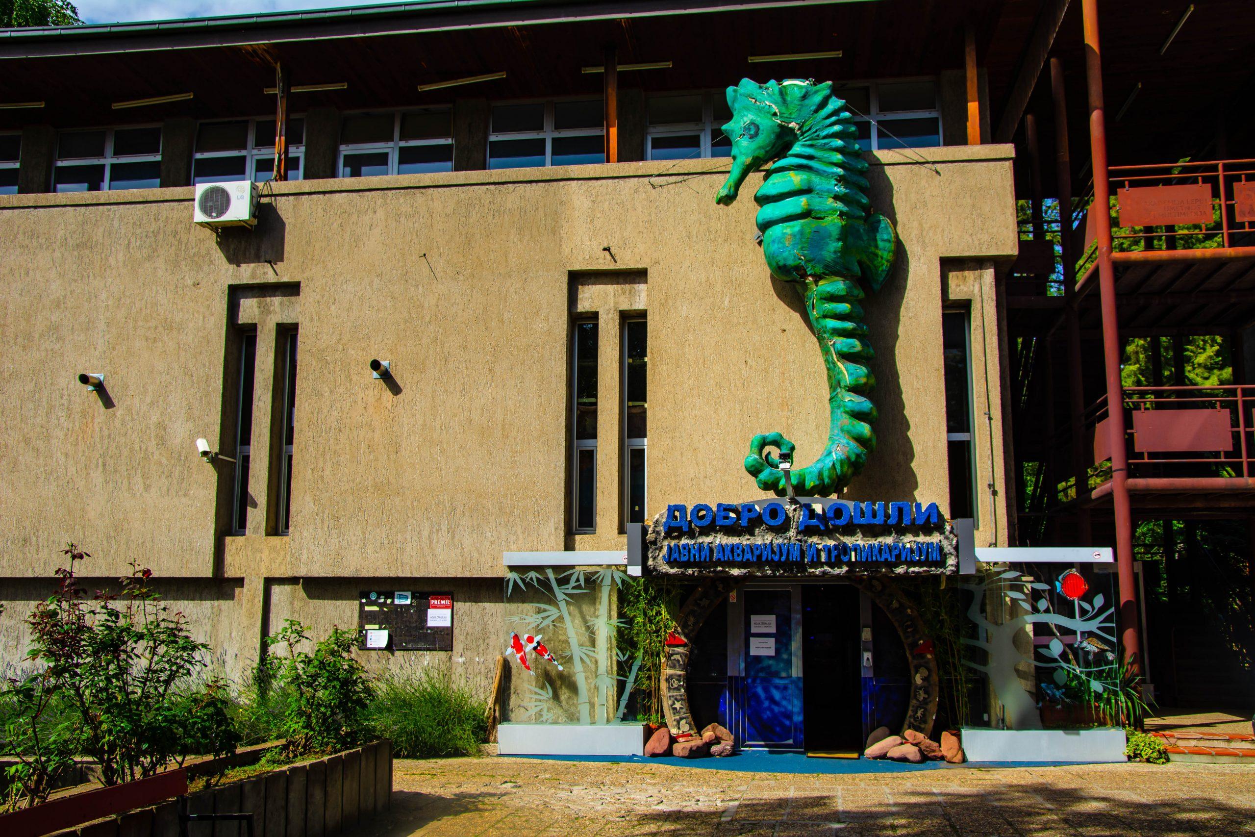 U Javnom akvarijumu: Mesto gde su životinje uvek na prvom mestu (FOTO) 3