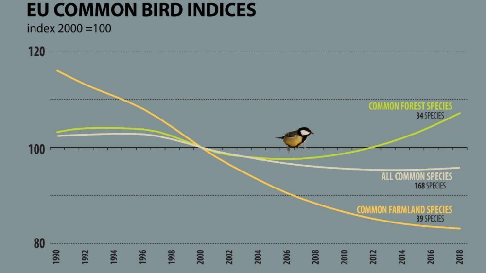 Populacija ptica u EU već nekoliko decenija u opadanju 2